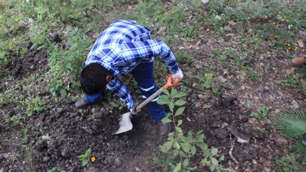 Habitantes de Carrizalillo descubren tres fosas clandestinas